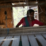 Livelihood Revolving Fund